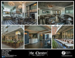 THE_CHESTER_5_SQ (3)
